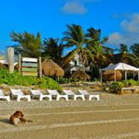 Acamaya Reef Cabanas Hotel