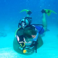 Diving Puerto Morelos