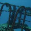 diving-xtabay-2b