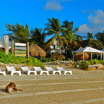 Hotel Acamaya