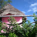 Hotel Acamaya Reef Cabanas