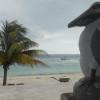 pelicanos-restaurant-4b