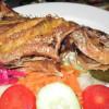 pelicanos-restaurant-7b